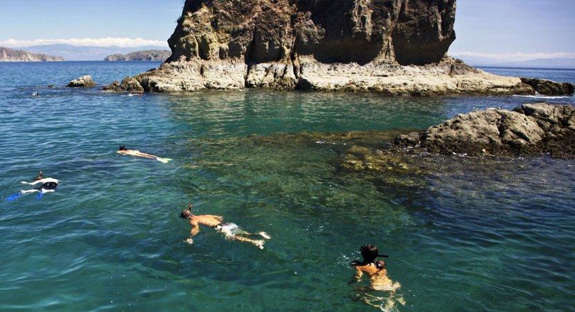 Tour Island Tortuga