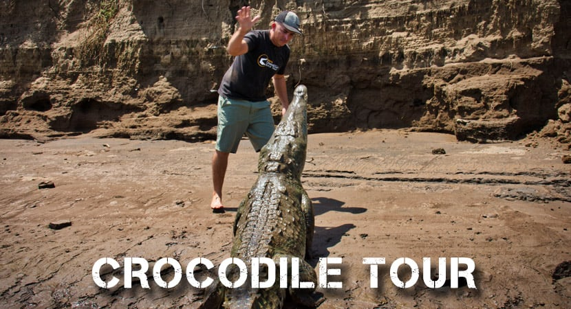 Crocodile Tour Jaco, Crocodile Tour Tarcoles, Costa Rica Crocodile Tour