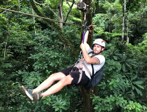 The Difference Between Zipline Tours And Canopy Tours In Costa Rica