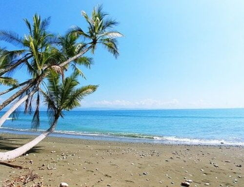 Costa Rica Pacific Vs Caribbean Coast: Which Is Best For You?
