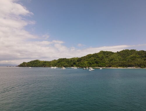 Tortuga Island Costa Rica Day Tour: Cruise through the Gulf of Nicoya