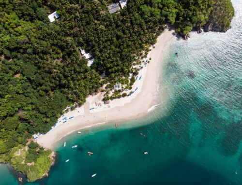 Tortuga Island in Costa Rica: Everything You Need to Know